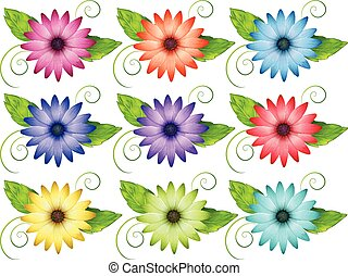 Set of flowers - Set of colorful flowers on a white...
