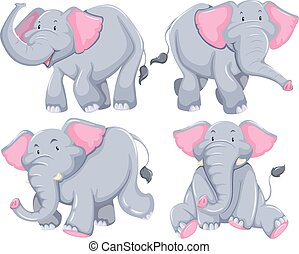 Elephants - Four elephants in diferent poses