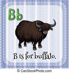 Buffalo - Flashcard letter B is for buffalo