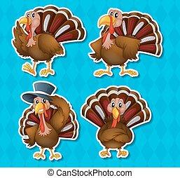 Turkey - Four happy turkey in different positions