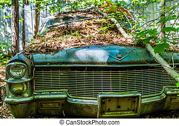 Classic Old Luxury Sedan Wrecked in Woods - A