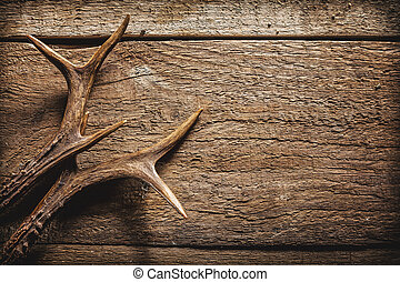 Deer Antlers on Wooden Surface - High Angle View of Deer...