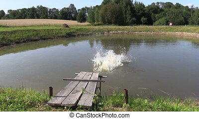 child jump water lake