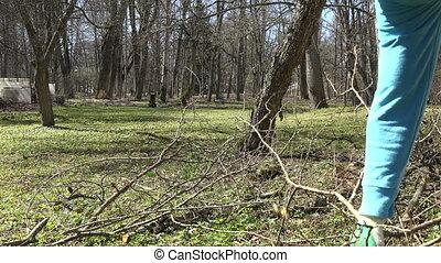 gardener man tree branch - Male gardener farmer man pick...