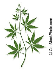 Cannabis - vector abstract image of cannabis