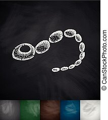 bacterium icon. Hand drawn vector illustration. Chalkboard...