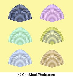 Seashell Collection - Exotic Seashell Collection Isolated on...