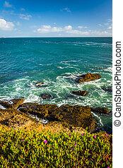 The rocky Pacific Coast seen in Pescadero, California.