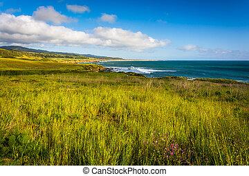 View of the Pacific Coast in Pescadero, California.