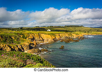View of the Pacific Coast in Pescadero, California
