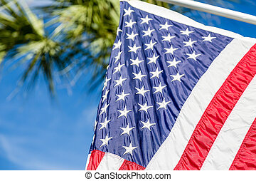 American Flag with Palm Tree in Background