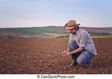 Farmer Checking Soil Quality of Fertile Agricultural Farm...