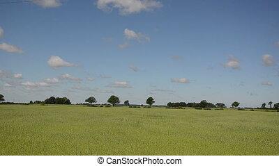 rural field car road