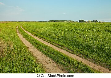 Field with path - Wheat field with tractor trails