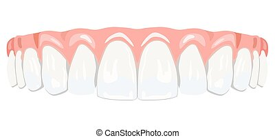 Teeth gums - The top row of white teeth