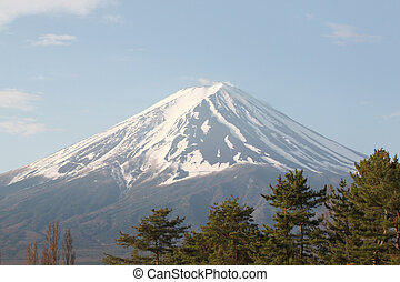 Mount Fuji and green pine trees. - Mount Fuji and green pine...