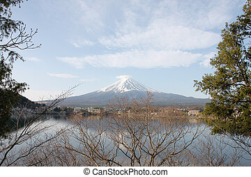 Mount Fuji - Mount Fuji and branches of trees