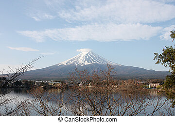 Mount Fuji. - Mount Fuji and branches of trees.