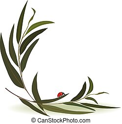 ladybird and eucalyptus - vector illustration with ladybird...
