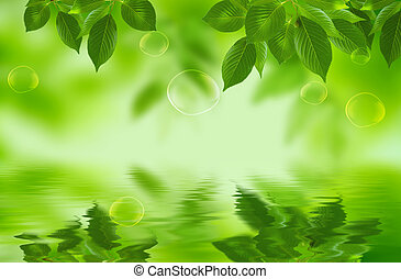 leaves - drawing of beautiful green leaves and waterdrop
