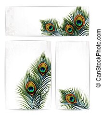 Set of vector peacock feathers with space for text. EPS 10