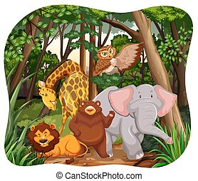 Wildlife in a forest with white background