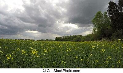 dark spring rain clouds motion