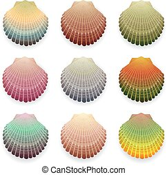 Cockleshells - Multi-colored cockleshell collection isolated...