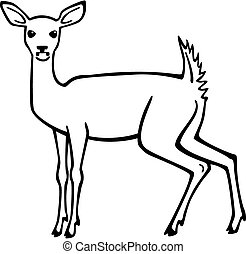 White Tail Deer - vector illustration an alert whitetailed...