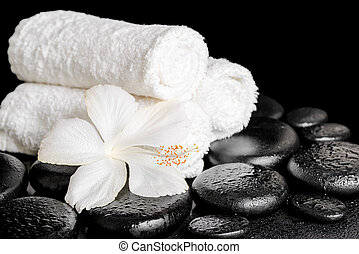 spa background of white hibiscus flower and towels on zen...