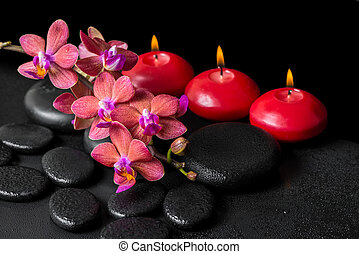 beautiful spa concept of blooming twig red orchid flower,...