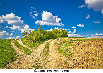 Countryside path intersection view in green nature, cross on...