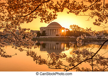 Washington DC in Spring - Washington, DC at the Tidal Basin...
