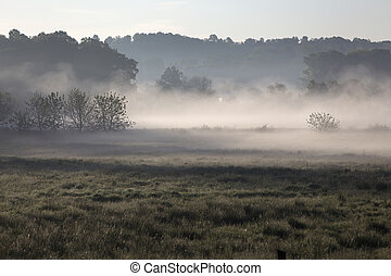 misty morning in rural Ohio - pasture and woods; misty...