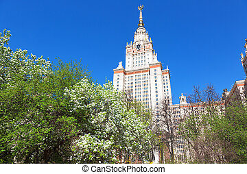 blossoming pear tree against Moscow State University