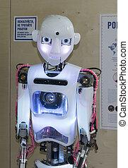 Humanoid robot
