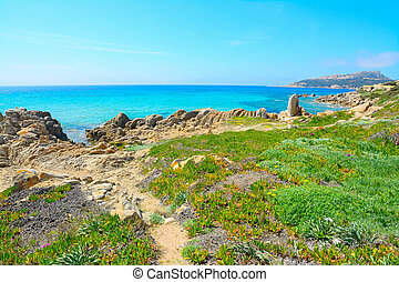 yellow rocks in santa reparata shoreline, Sardinia