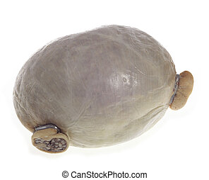Haggis isolated on white - A traditional Scottish haggis, a...