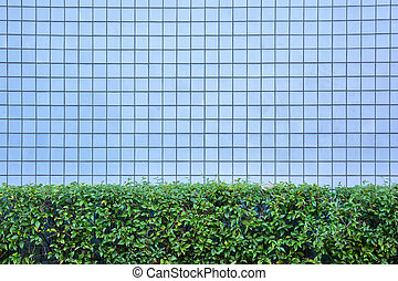 blue tiles wall texture with green bush for background