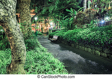 tropical park by night - tropical park in Funchal on Madeira...