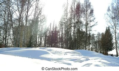 Beautiful winter park and sunlight with lense flare effects. Russia