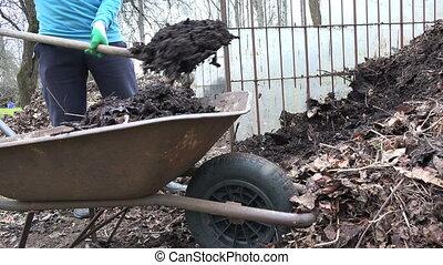 farmer load compost fork - close up of gardener farmer load...