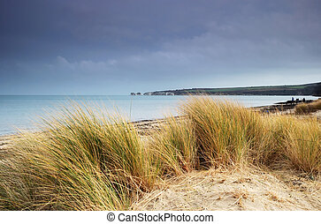 Beach in Winter - Studland Beach and Old Harry Rocks, Dorset...