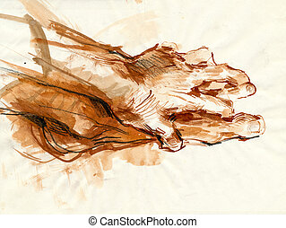 a hand drawing - hand and foot - a hand drawn illustration...