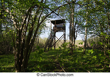 Hidden bird watching tower in a deciduous forest in a...