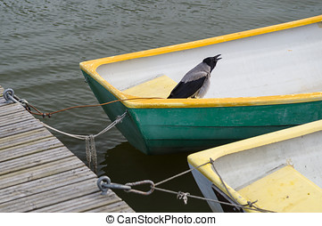 Bird in fisherman boat tied at dock - Crow bird in fisherman...