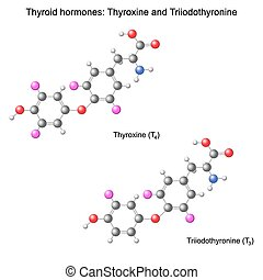 Model of thyroid hormones - Structural chemical model of...