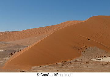 Hidden Vlei - Red dunes from Hidden Vlei, Sossusvlei Namibia