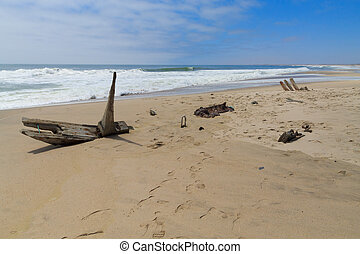 Shipwreck from Skeleton coast - A view from Skeleton Coast...