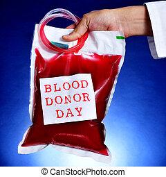 doctor, texto, bolsa, sangre, tenencia, donante, día